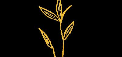 Myri Music Blume